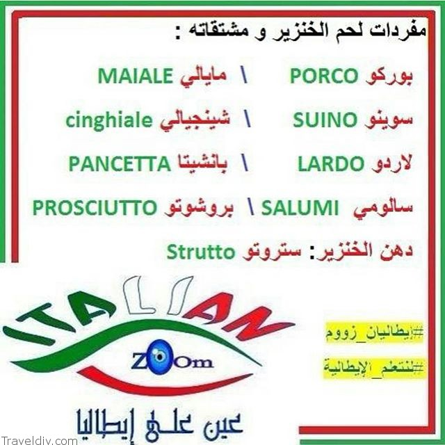 معنى كلمة خنزير بالايطالي
