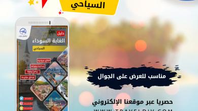 Photo of دليل الغابة السوداء و ضواحيها