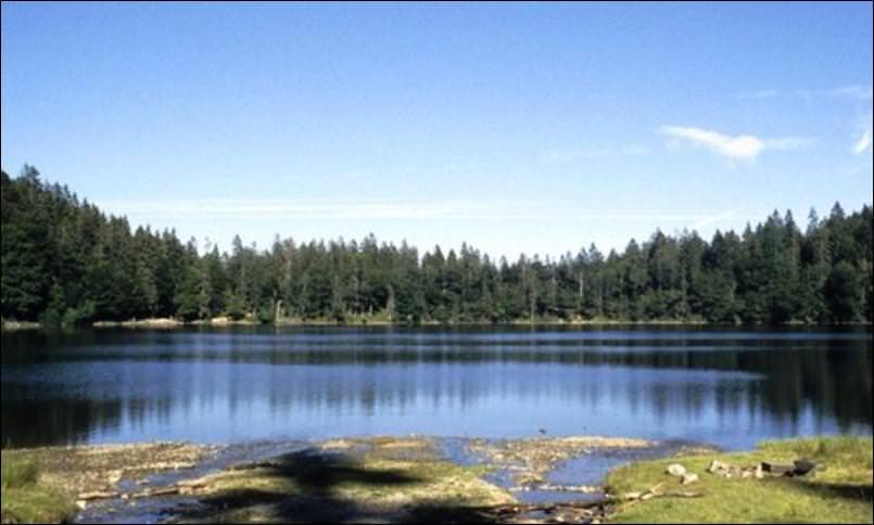 بحيرة شلوخبيرغ