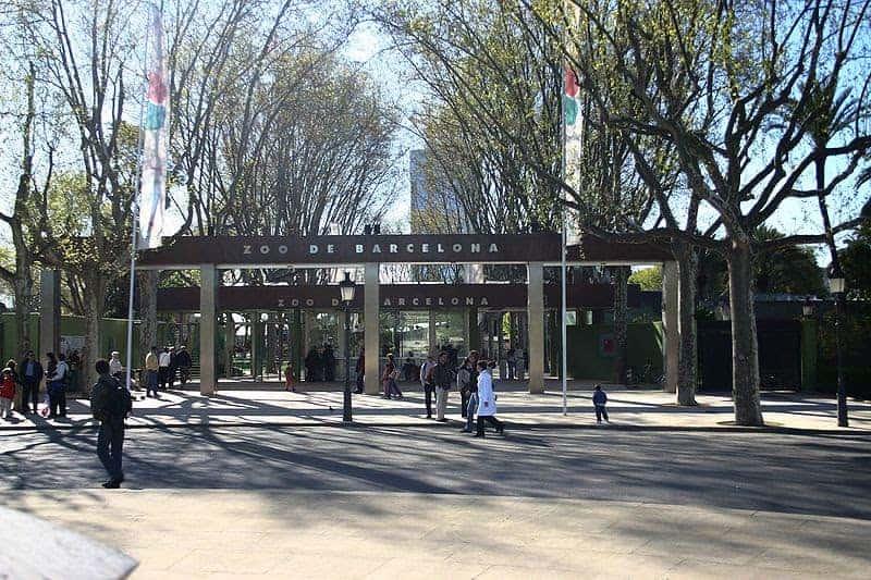 حديقة حيوان برشلونه
