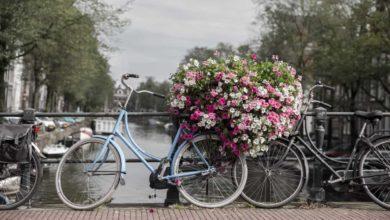 Photo of برنامج سياحي و جدول يومي لزيارة امستردام و الارياف الهولندية .
