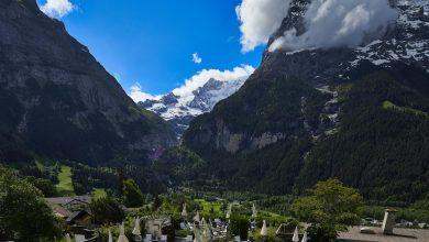 Photo of هذه الإطلالة الخلابة من فندق spinne في قرية غريندلوالد بـ سويسرا