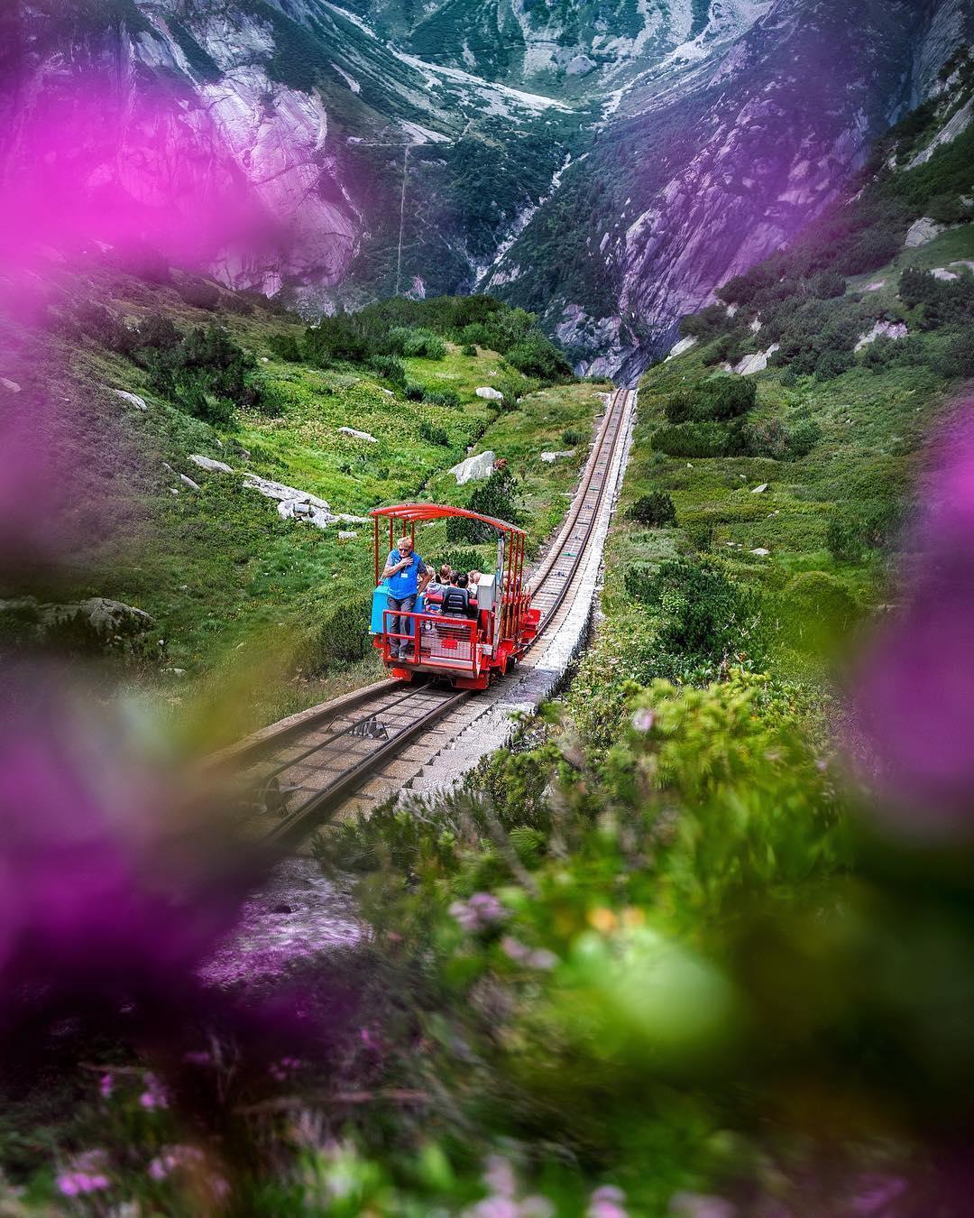 قطار الطبيعة