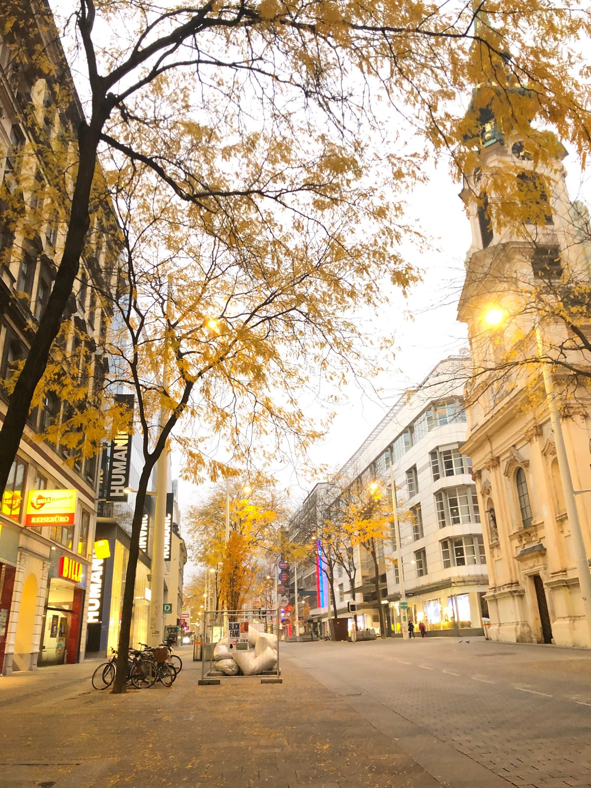 شارع ماريا هيلفر