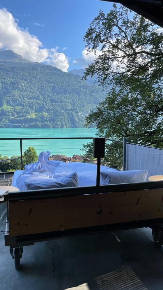 فنادق فريده منسويسرا و فرنسا